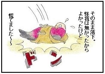腹巻脱出ゲーム4