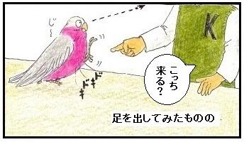 人見知りの鳥3