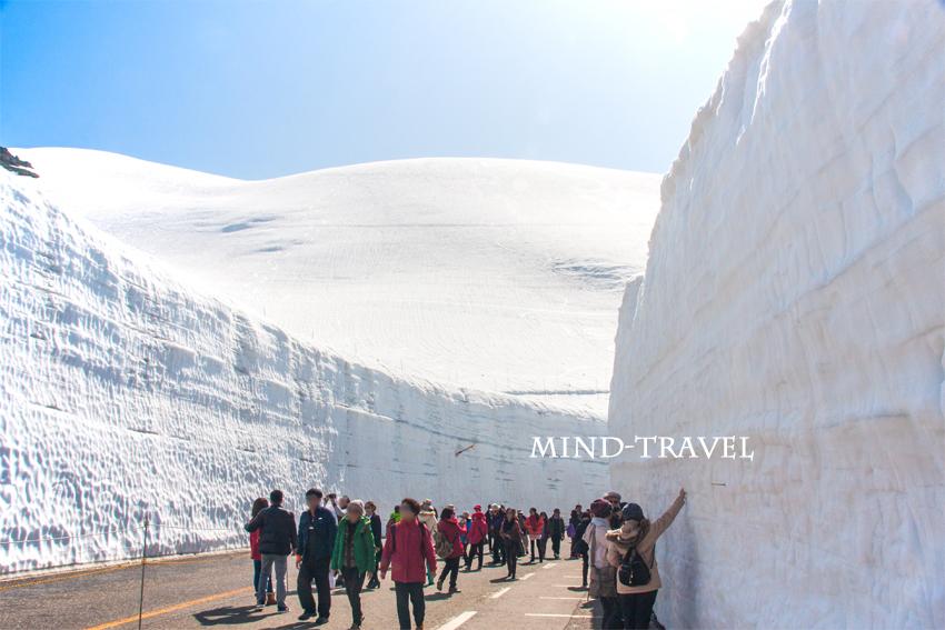 立山黒部 雪の壁