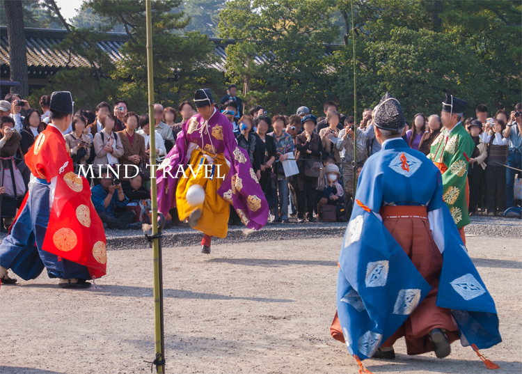京都御所 蹴鞠