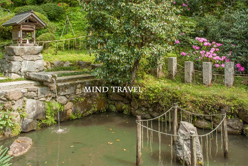 岡寺 龍蓋池