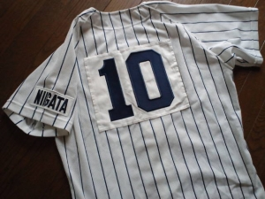 第133回北信越高校野球・新潟県大会