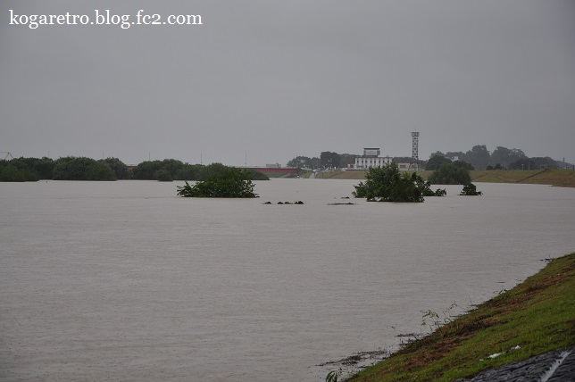 大雨の渡良瀬川2