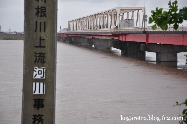 大雨の渡良瀬川3