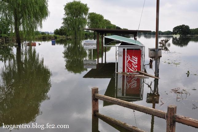 大雨の後の遊水地(2)5