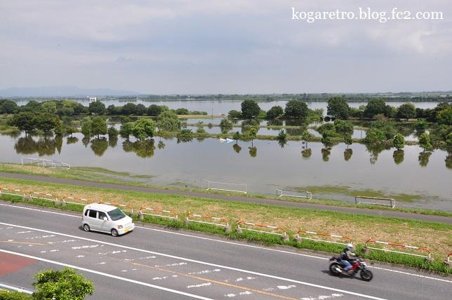 大雨の後の遊水地(2)8