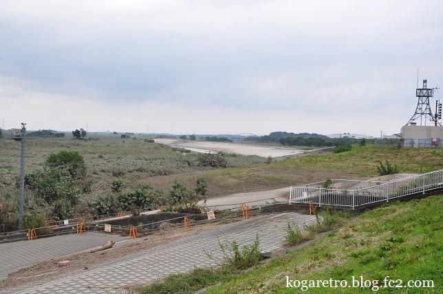 今日の渡良瀬遊水地3