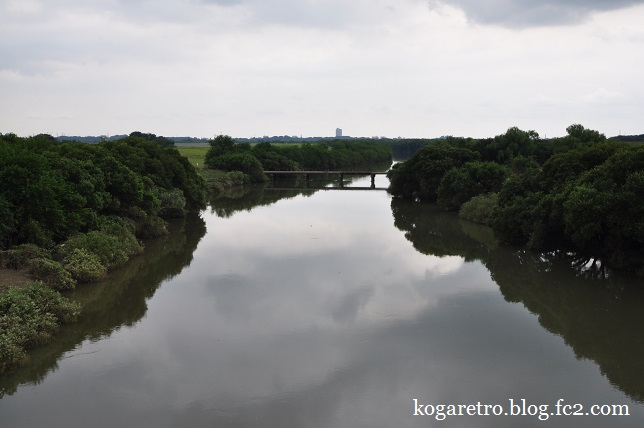 今日の渡良瀬遊水地4