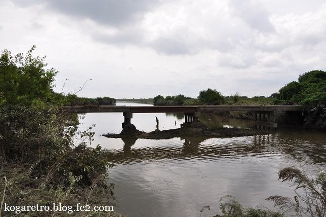 今日の渡良瀬遊水地6