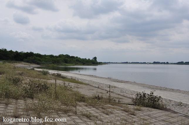 今日の渡良瀬遊水地7