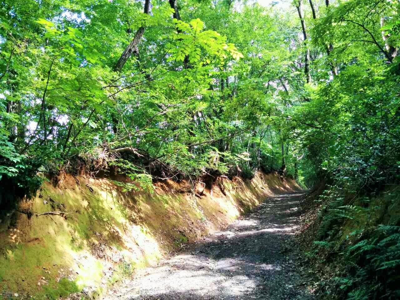護摩堂山2