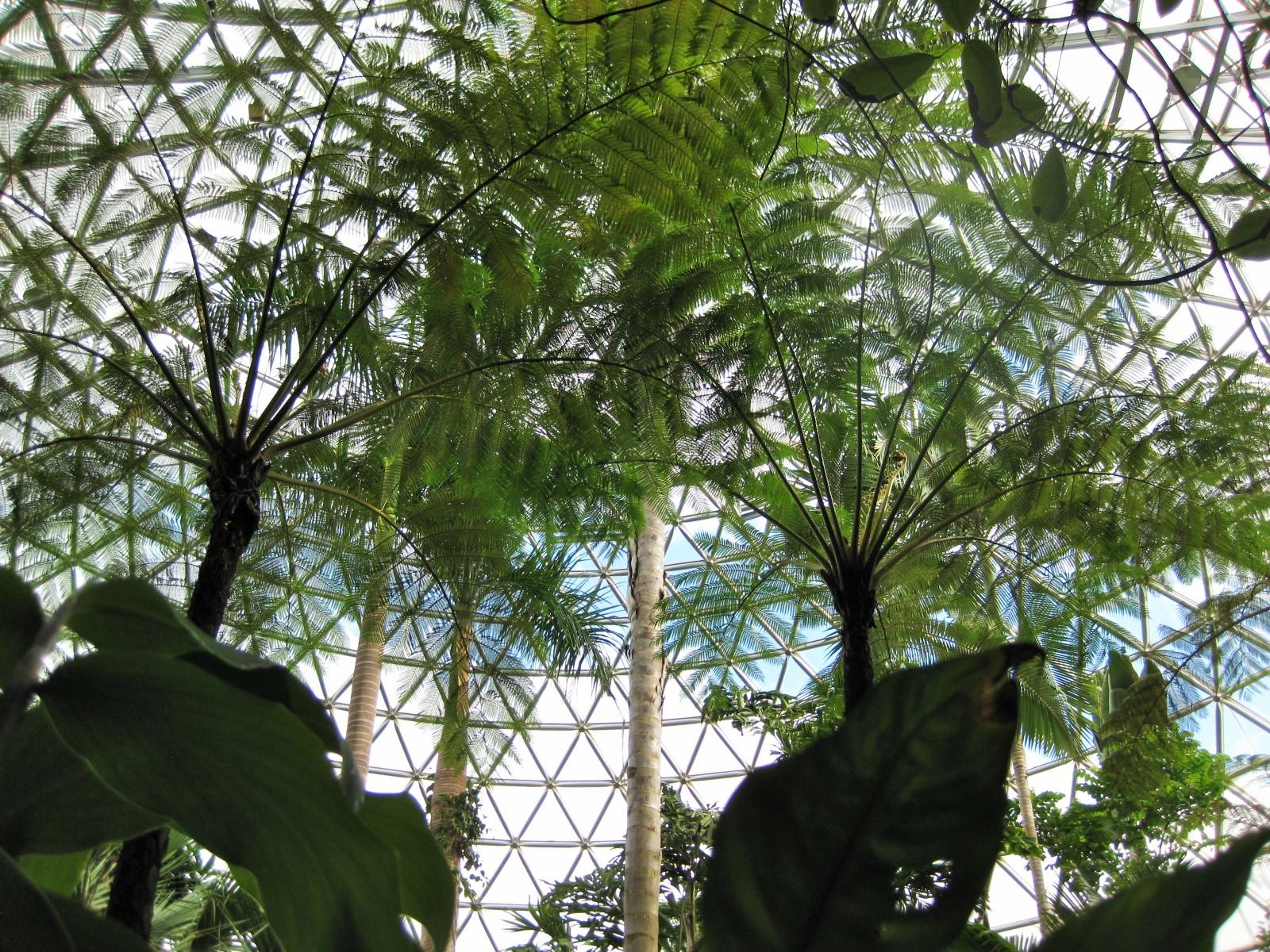 植物園11