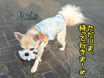 yuruiro20150825_k002