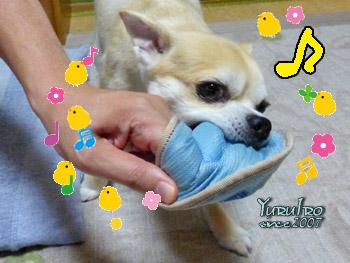 yuruiro20150815_k002
