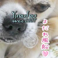 yuruiro20150921_k003