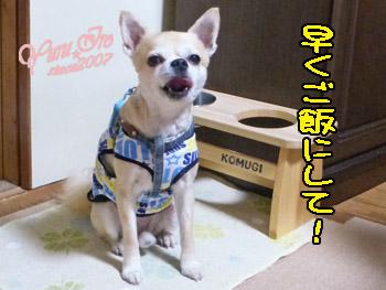 yuruiro20151010_k004