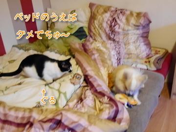 ベッドの上はダメでちゅ~♪2