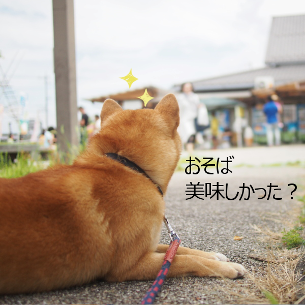 20150822-006.png