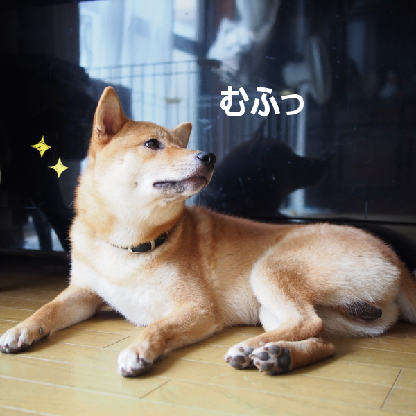 20150826-003.png