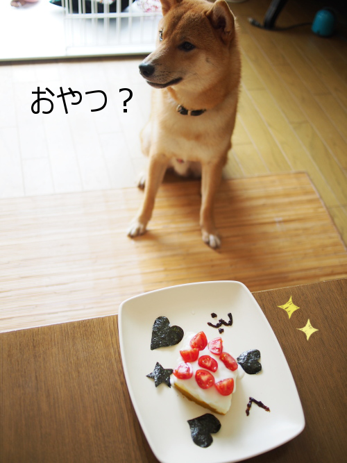 20150831-002.png