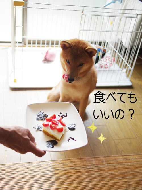 20150831-003.png