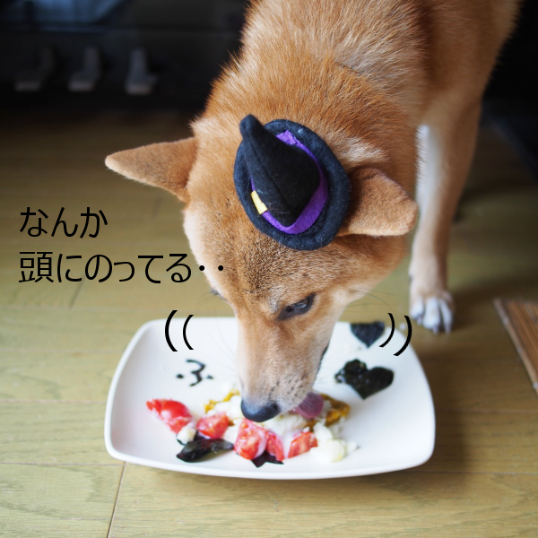 20150831-008.png
