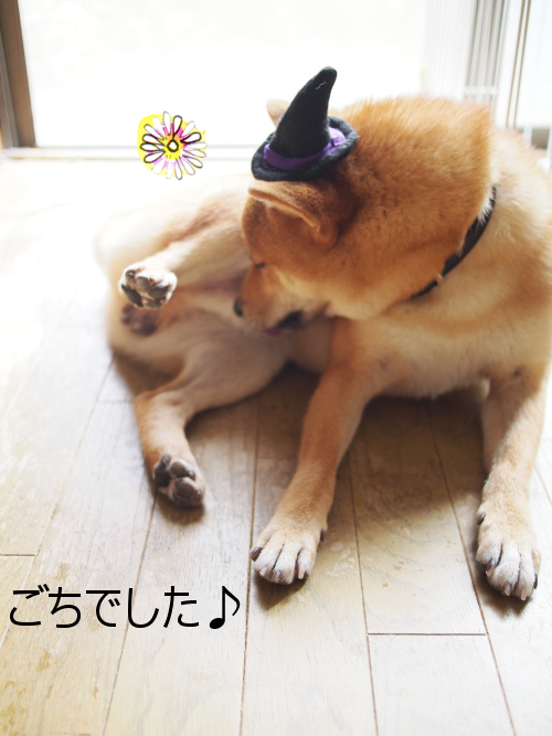 20150831-011.png