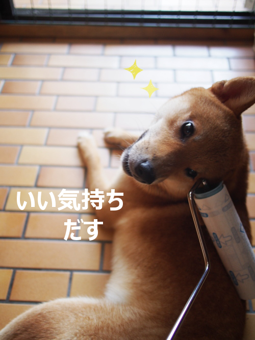 20150908-003.png
