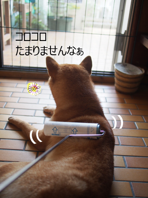 20150908-006.png
