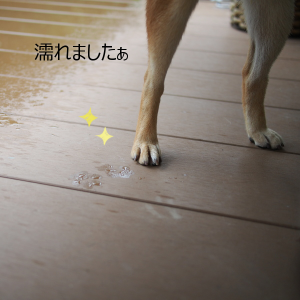20150914-002.png