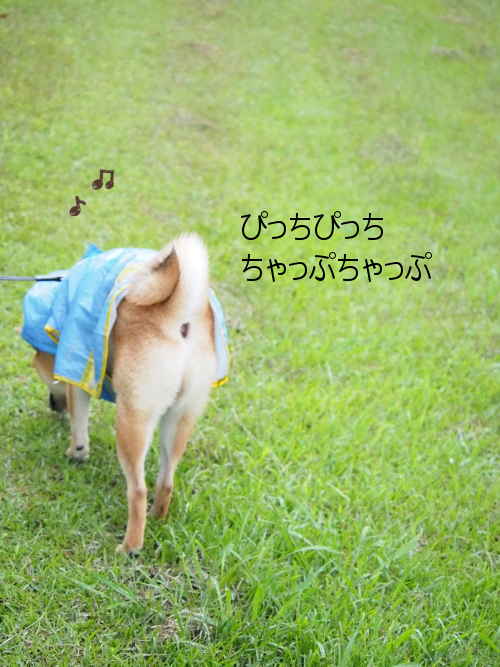 20150918-005.png
