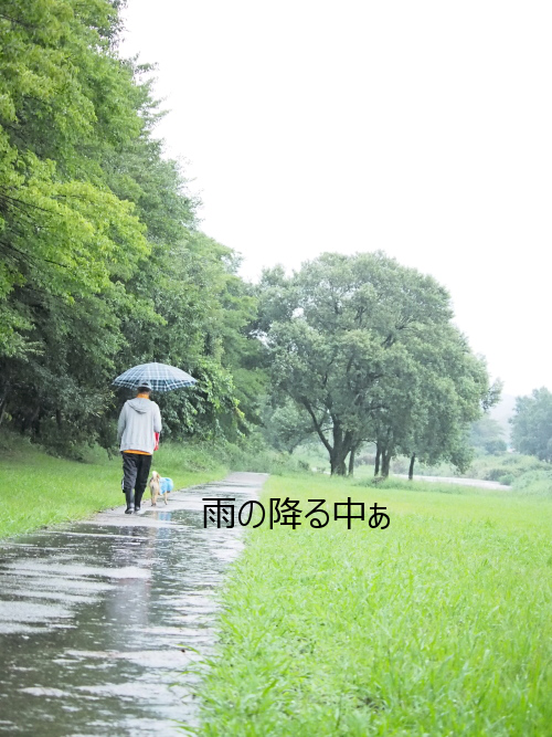 20150918-007.png