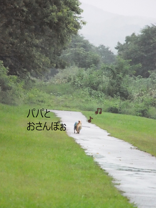 20150918-008.png