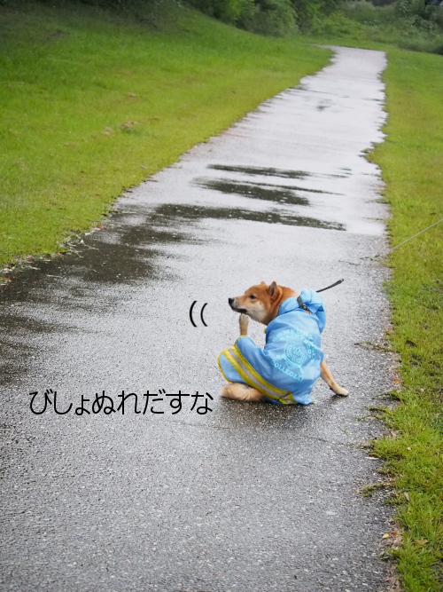 20150918-009.png