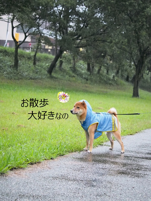 20150918-010.png