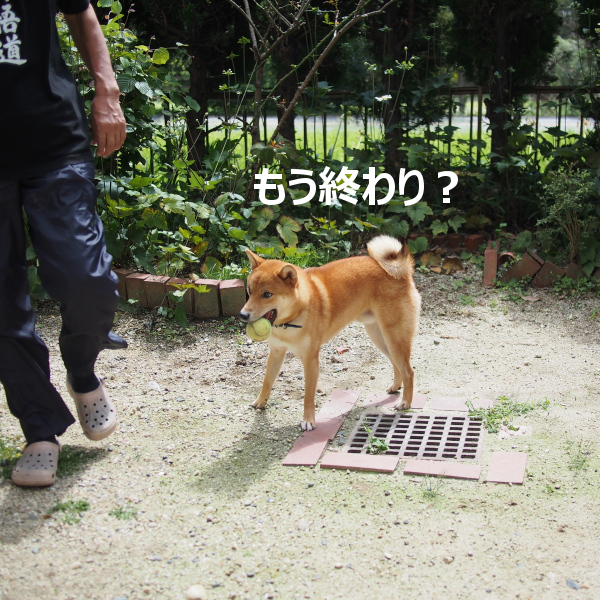 20150922-003.png