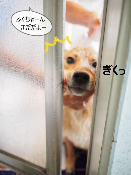 20150924-008.png