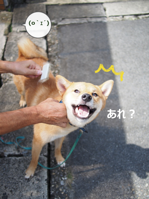 20150930-005.png