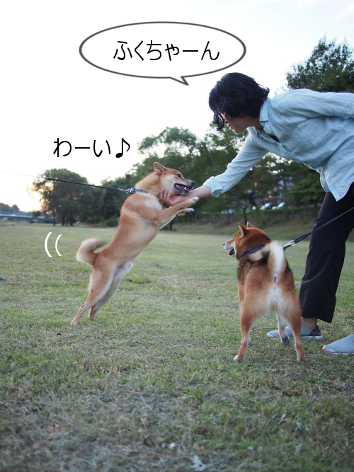 20151016-005.png