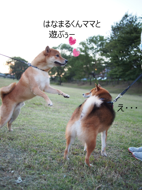 20151016-006.png