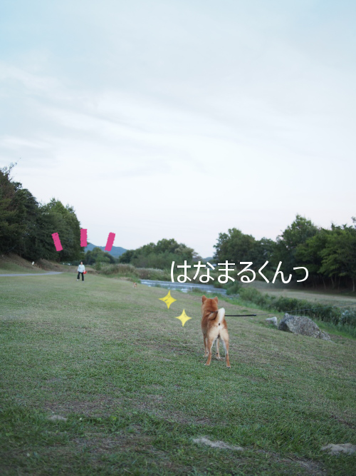 20151018-001.png
