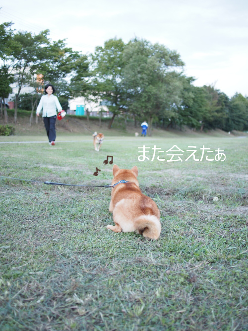 20151018-002.png