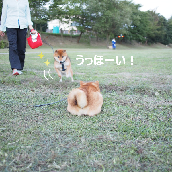 20151018-003.png