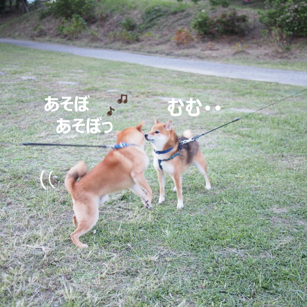 20151018-006.png
