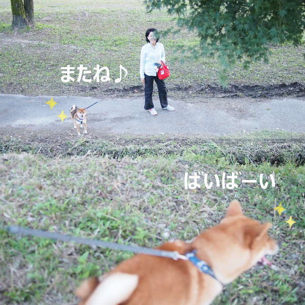 20151018-008.png