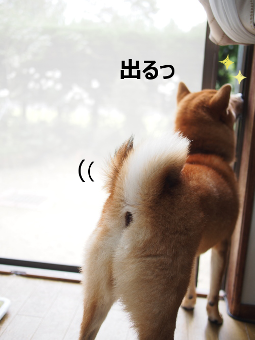 20151020-003.png