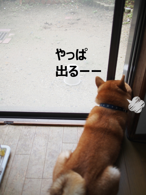 20151020-005.png