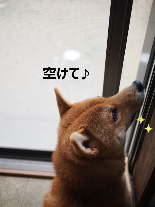 20151020-006.png