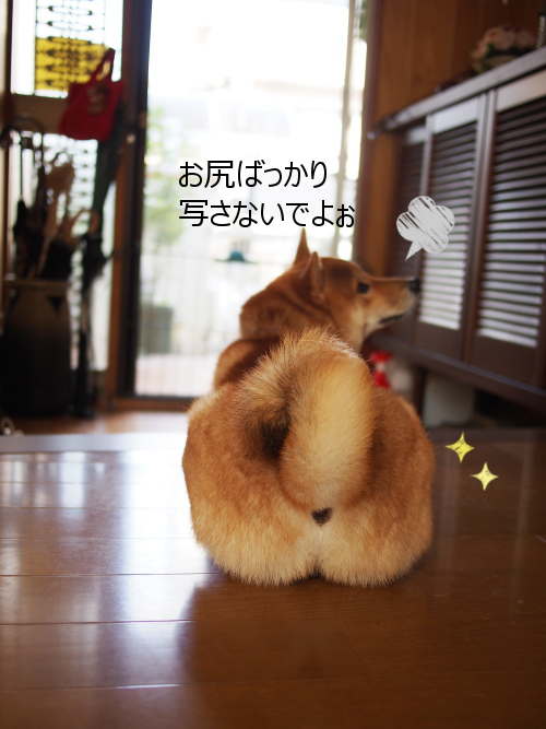 20151022-003.png