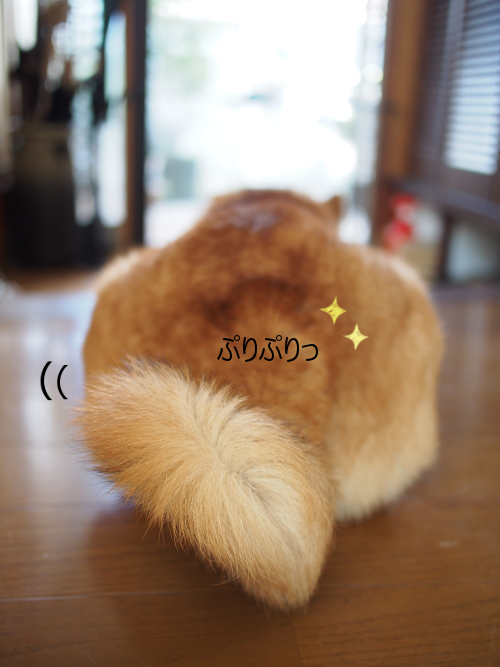 20151022-004.png